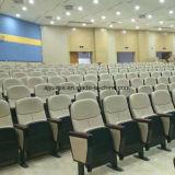 La reunión pública de los muebles del uso comercial preside Yj1001h