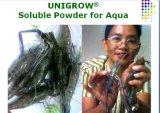 O pó solúvel de Unigrow para aquático, mantem a água limpo e o estábulo