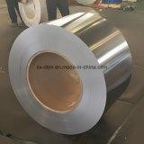 Strato all'ingrosso dell'acciaio inossidabile di rivestimento della linea sottile di meglio 3mm più popolare