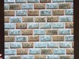 El patrón de mármol de la serie 3000 Hoja de aluminio con buena resistencia a la intemperie