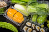 Chinesischer PP/Pet/PS/PVC Farben-Drucken-Qualitäts-Nahrungsmittelkasten nehmen Schnellimbiss-Verpackungs-Behälter weg