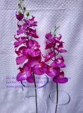Искусственние цветки орхидеи 80cm Gu-Jy912202404