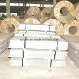 La vendita calda 430 ha tagliato lo strato dell'acciaio inossidabile con l'alta qualità