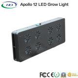 Apollo planta 12 LED crescer luz para efeito de estufa comercial