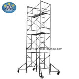 具体的な構築のための金属の梯子の足場