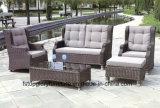 Insieme di caffè stabilito del PE del rattan del sofà esterno per qualsiasi tempo della mobilia (TG-JW31)