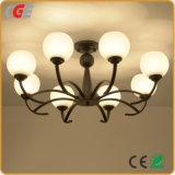 Modernes hängende Lampen-Innenlicht mit LED-Birne