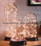 Indicatore luminoso di cupola di vetro della decorazione della cupola di bianco LED di natale caldo di vetro domestico della catena chiara