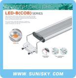 Cilindro de Acuario de la luz de techo LED-B (COB) de la serie