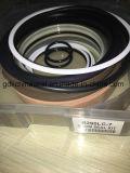Hochkonjunktur-/Arm-/Wannen-Dichtungs-Installationssatz für Hyundai R290LC-7