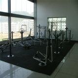 Matériel de cour de jeu de forme physique de gymnastique d'Outdoor&Indoor (QTL-2703)
