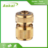 Connecteurs en laiton de laiton de connecteurs de boyau de tuyau de taraud industriel