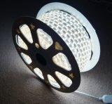 Éclairage LED de bande de la lampe 220V 2835SMD DEL de DEL