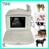 Thr-Us6600V Ausrüstungs-beweglicher Tierultraschall-Scanner