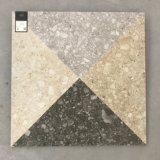 Les matériaux de construction de style européen de la tuile de céramique Floor and Wall Tile (TER4HP)
