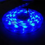 Cer, IEC/En62471 genehmigte 60LEDs/M SMD5050 RGB flexibles LED der Streifen-Licht