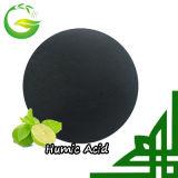 Fertilizante orgânico de /Granular do pó do ácido Humic 70%