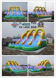Trasparenza di acqua gonfiabile del gioco adulto dei capretti con il raggruppamento (MIC-275)