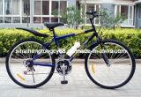 Bicicletta d'acciaio della montagna con la bottiglia di acqua (SH-MTB068)