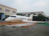Раздувной рекламируя шарж самолета раздувной модельный раздувной на сбывании (AQ74270)