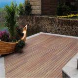Jardim / Decoração ao ar livre no pátio do WPC Oco Flooring deck exterior