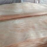 Bintangor/Okoum/карандашом кедра деревянные поверхности шпона