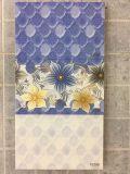 azulejo de la pared del suelo de la cocina del cuarto de baño de la inyección de tinta de 300X600m m