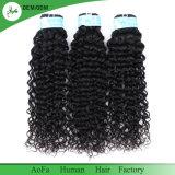 Indien populaire Curly Virgin Remy cheveux noir naturel humain