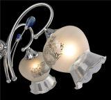 Lampe pendante en verre de lampe en verre de lustre de créateur