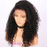 흑인 여성을%s 모든 자연적인 색깔 비꼬인 꼬부라진 레이스 정면 가발