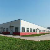Structure en acier préfabriqués de conception de l'entrepôt
