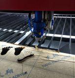 금속 비금속 목제 절단을%s 전문가 CNC Laser 절단기