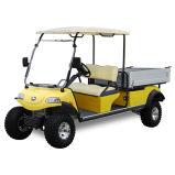 Carro de golfe com caixa Del3022gh da carga