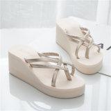 형식 Female Slippers 또는 Wedge Heels Slippers/Casual Slippers