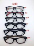 De nieuwe Vrouwen van de Acetaat van het Ontwerp van de Bril, het Nieuwe Ontwerp van de Bril, de Optische Levering voor doorverkoop van Frames