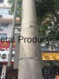 1/2 Duim 304 de Prijs van de Stroken van het Staal in China 201.301 304 316L