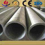 Tp317L de Grote BuitenPijp van het Roestvrij staal van de Diameter voor Industrie van de Energie