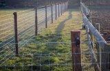 Örtlich festgelegter Knoten gesponnener Draht-Bereich-Zaun