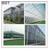 温室ガラスのための強くされた低い鉄ガラス4mm