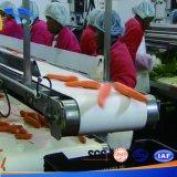 Linha plástica do transporte do alimento de mar para salmões