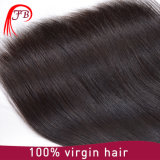 인도 인간적인 레이스 4× 4 똑바른 Remy 머리