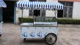 アイスクリームの自転車またはXsflg氷のクリームかGelatoのトロリー(セリウム)