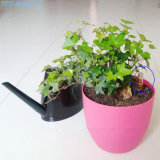 Absorção de água automático Flower Pot com indicador de nível de água