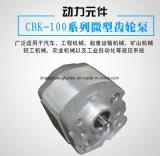 CbkF100ギヤポンプはマイクロ油圧装置で使用される