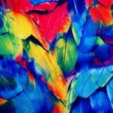 Le spandex polyester mat tricot Warp pour maillots de bain de tissu d'impression