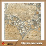 De voorzien Ceramische Tegels van de Vloer Mecixo