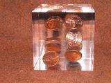 Pisapapeles de acrílico claro con las monedas Embedment