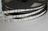 Tira de IP68 24V 2835 con la viruta de Epistar