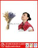 Involucro Anti-Stress del collo di comodità di Microwaveable/sacchetto freddo