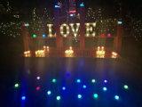 El día de fiesta ligero decorativo de Walmart enciende cartas ligeras de la Navidad LED de la carpa